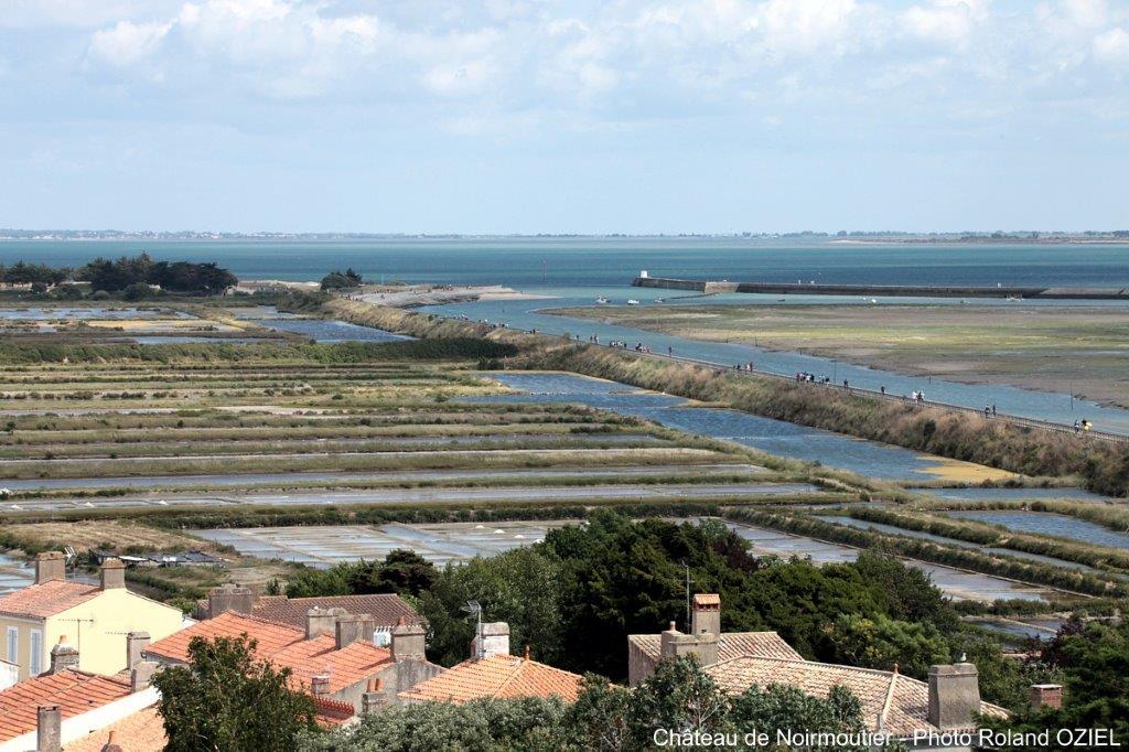 l'ile de Noirmoutier marais