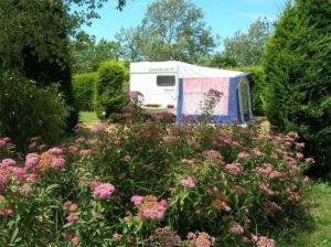 emplacement fleuri en camping de Vendée